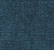 Denim Chenille