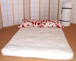 Outta Trouble Futon Mattress